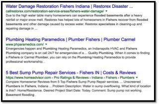organic results for seo in fishers